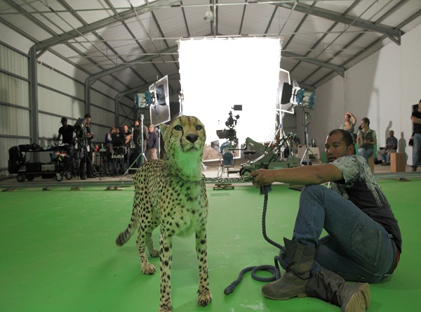 behind the scenes with wrangler and cheetah